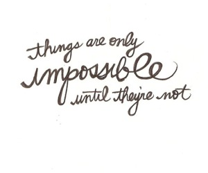 things-are-only-impossible-until-theyre-not-20130630552